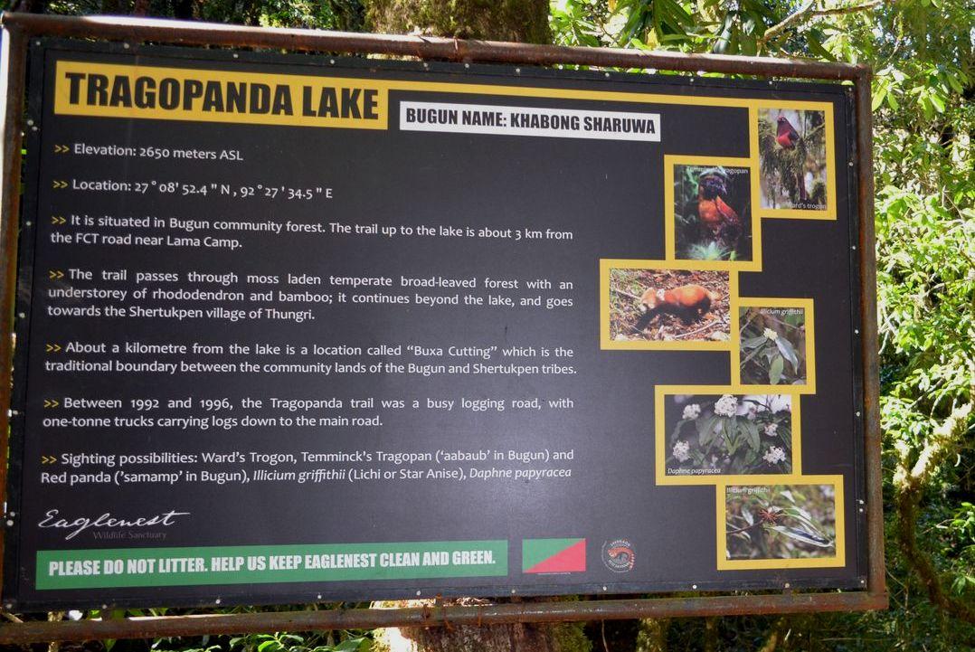 Tragopanda Lake